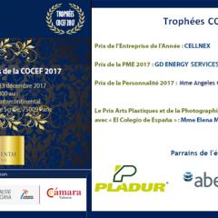 Dîner des Trophées COCEF 2017_2
