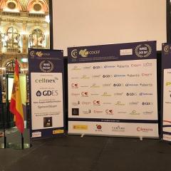 Dîner des Trophées COCEF 2017_3
