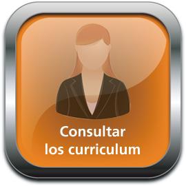 consultar curriculum